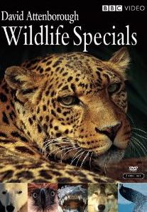 Stream Your Education Online: David Attenborough: Wildlife Specials